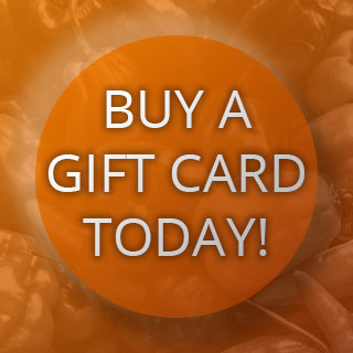 Buy a Gift Card Today!